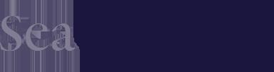 SeaChange Capital Partners Logo